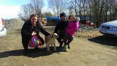 Photo: WSPANIAŁE WIEŚCI! Po wielu rozmowach z nową właścicielką, STAŁO SIĘ. Ruffi trafił do cudownego, kochającego domu w Gdańsku. Podróż do domu zniósł dzielnie, był już na spacerze w pobliskim parku, zapoznał się z kotami i ABSOLUTNIE WSZYSTKO PRZEBIEGA POMYŚLNIE!