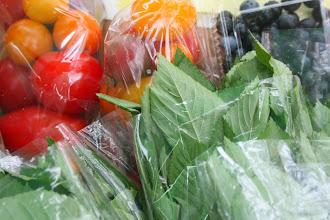 Photo: 江戸川台東の燻製屋さん畑でミニトマト、モロヘイヤ、バジル、ブルーベリーを収穫しました。