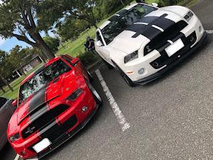 シェルビー  GT500のカスタム事例画像 blk_challengersrthellcatさんの2019年09月17日20:32の投稿