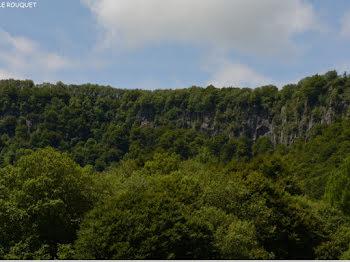 terrain à Chambon-sur-Lac (63)