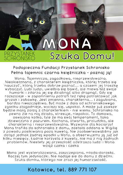 Firmówka Mona