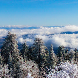 Above the Clouds by Dave Walters - Landscapes Cloud Formations ( nature, sandia crest, new mexico., landscape, colors )