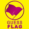 Guess Flag icon