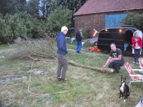 Photo: Frank....der Baum ist schon Tod....da bringt auch streicheln nix !!!