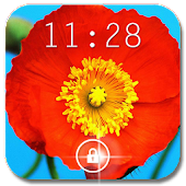 Poppies Flowers Live Wallpaper