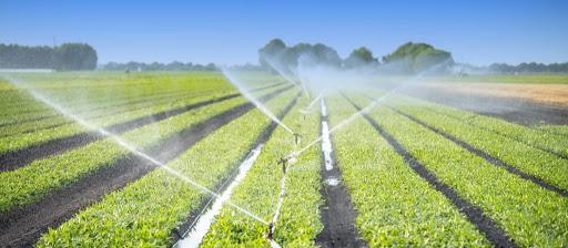 reuso na irrigação