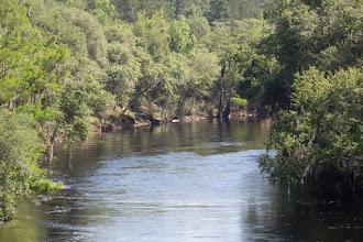 Photo: the Suwannee River