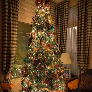 Lori Christmas 16-3.jpg