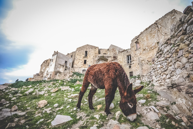 CRACO - il paese fantasma di simona_cancelli