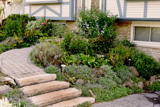 Photo: Old concrete steps hugged the house and made it feel unwelcoming. Pulling it away from the wall and installing gardens added warmth and welsome.