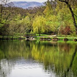 jezero Maksimir by Dunja Kolar - City,  Street & Park  City Parks ( maksimir, croatia, zagreb )