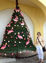 Photo: Turisti ja museon edessä ollut flamingokoristeinen joulukuusi