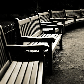 Benches by Sotiris  Filippou - Black & White Objects & Still Life ( nobody, plastic, wood, bench, bright, relax, yellow, leaves, cold, nature, arena, seat, event, empty, coliseum, tribune, grass, texture, white, row, winter, outdoors, stadium, trees, lines, seating, day, walk, yard, colorful, landscape, spring, settee, soccer, audience, park, beautiful, sport, section, broken, sit, chair, russia, pattern, color, stand, background, outdoor, summer, group, circus, design )