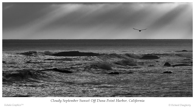 Photo: A lone seagull drifts on the evening breeze off Dana Point Harbor, California.  Canon 550D, ISO 100, 250mm, f/11, 1/80 second; post-processing performed using Adobe Lightroom 3.6