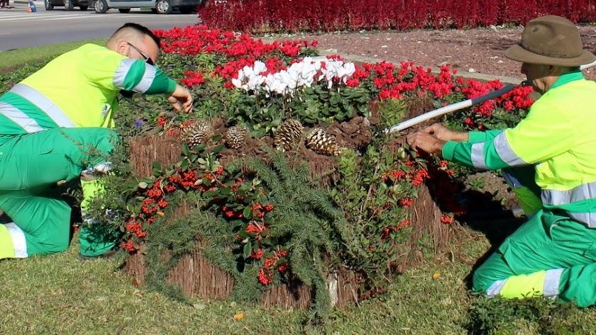 El trabajo de jardinería será uno de los puestos ofrecidos.