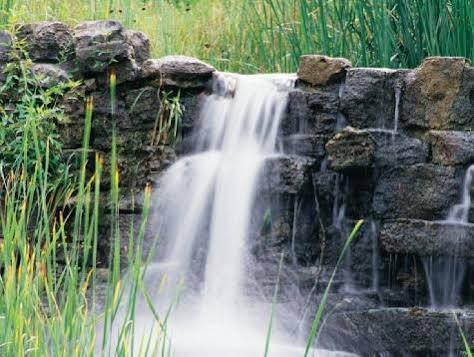 Wyndham Branson at the Falls