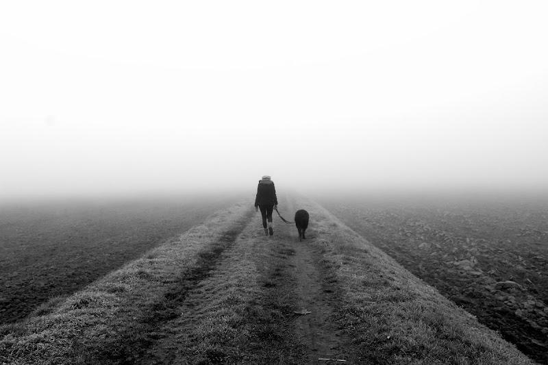 La nebbia di Luca Mandelli