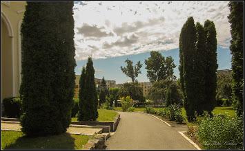 Photo: Conifere din Turda, Calea Victoriei, Mr.3 - Parcul Bisericii - 2019.07.09