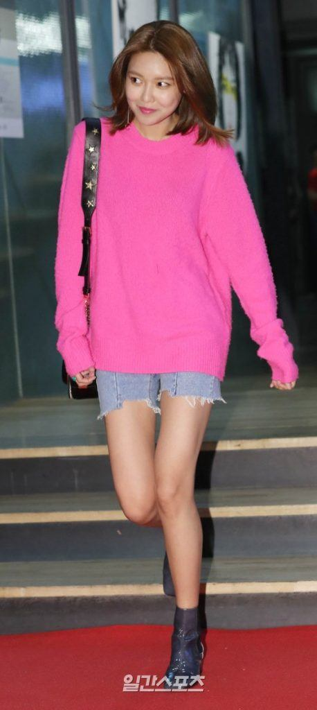 sooyoung legs 16