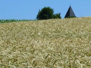 Photo: Da taucht aus dem Kornfeld eine andere 'Kirche' auf.   ;-)