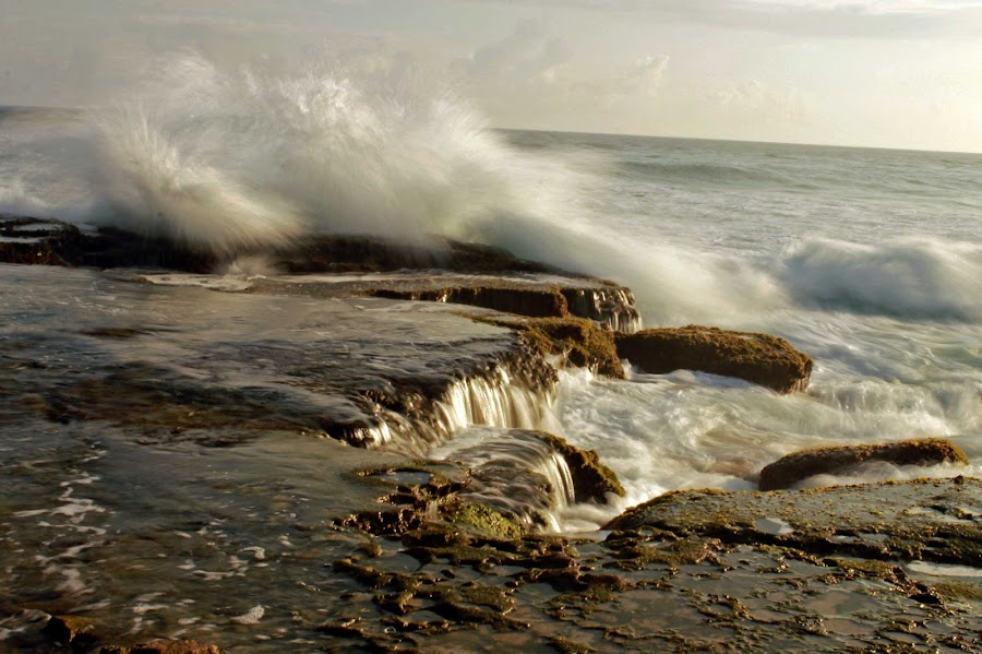 Atlantic Ocean by Vanessa Lazzarini - Landscapes Beaches ( sea )