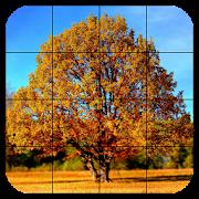 Tile Puzzles · Autumn