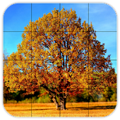 Tile Puzzles · Autumn