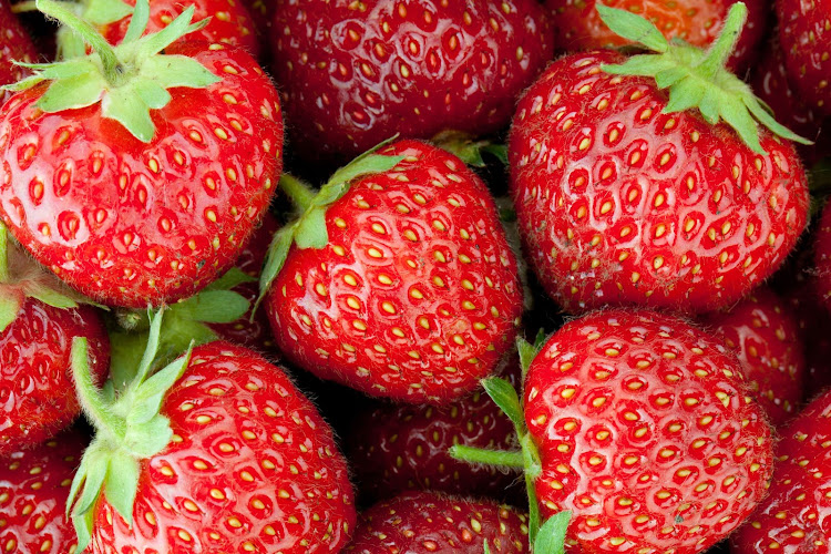 woman arrested over australia strawberry needle scare