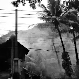Abandonded house in smoke by Svetlana Saenkova - Black & White Buildings & Architecture ( sri lanka, smoke, abandoned,  )