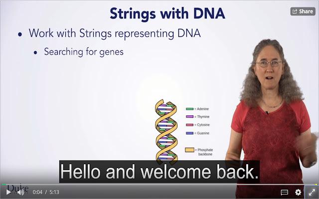 Coursera Subtitle Resizer