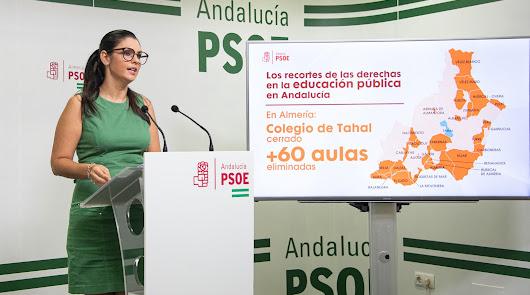 El PSOE denuncia que más de 60 aulas permanecen cerradas en varios municipios