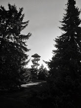 Photo: Black and white photo of a tower framed by pine trees at Cox Arboretum in Dayton, Ohio.