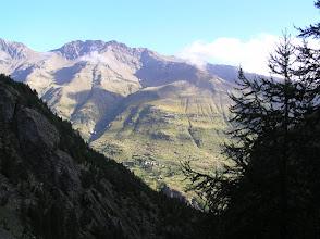 Photo: De Dormillouse à Prapic: au milieu de la forêt de mélèses face à Dormillouse