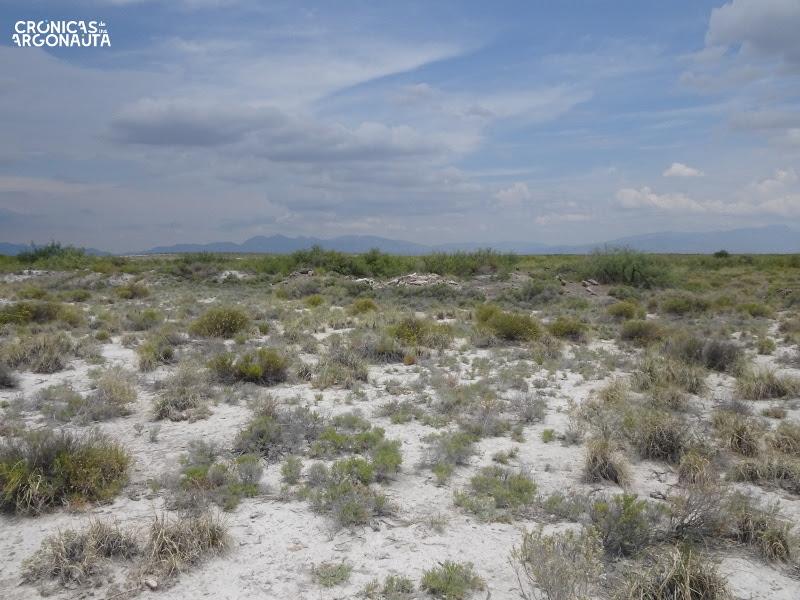 desierto de cuatro cienegas