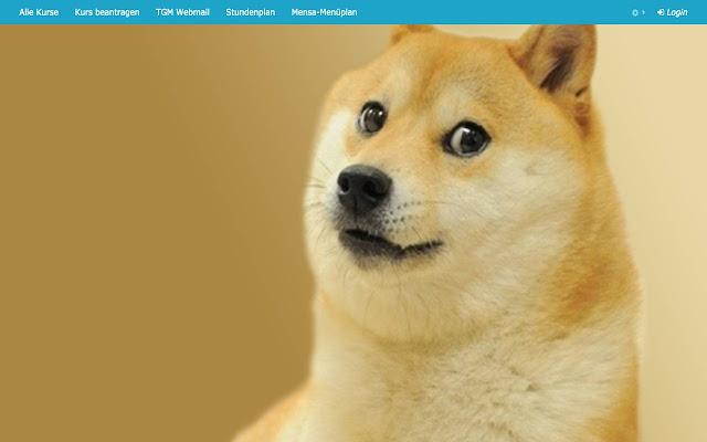 TGM Elearning Doge Hintergrund