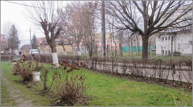 Photo: Calea Victoriei, alee de acces la blocuri - 2018.01.02