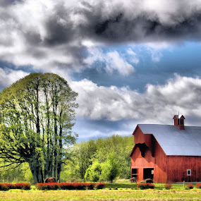 Oregon countryside by Christy Sawyer - City,  Street & Park  Vistas ( oregon, red, barn, country )
