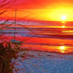 Linnell Landing Beach by Kathlene Moore - Landscapes Beaches