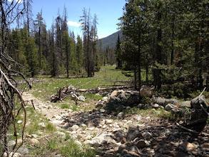 Photo: Hike Along Alturas Creek