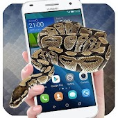 Snake On Screen - Snake Screen