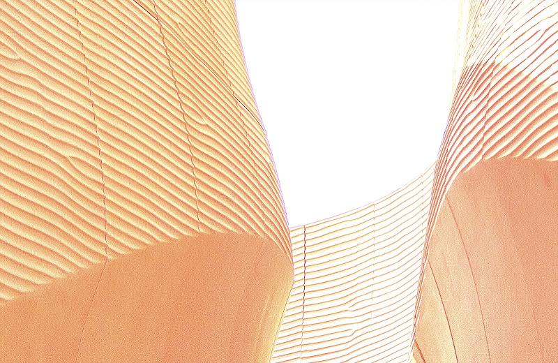 dune di Saltini Rino