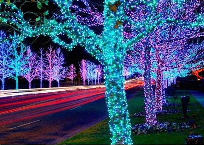 led đúc quấn cây trang trí đường phố