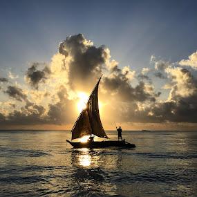 SeaSunrise by Andrew Morgan - Instagram & Mobile iPhone ( dhow, zanzibar, iphoneography, sailing, boats, beauty, sunrise, landscape, paradise, island )