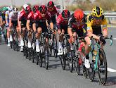 Martin vreest voor het einde van één of twee ploegen indien Tour niet doorgaat