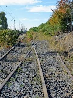 Schienen enden im Gestrüpp.