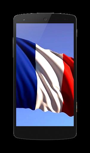 フランスのビデオLWPの旗