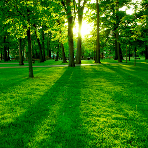 nature backgrounds pictures Exolgbabogadosco