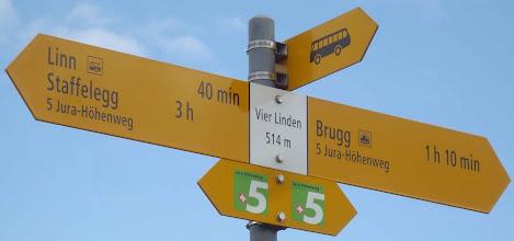 Photo: Vier Linden