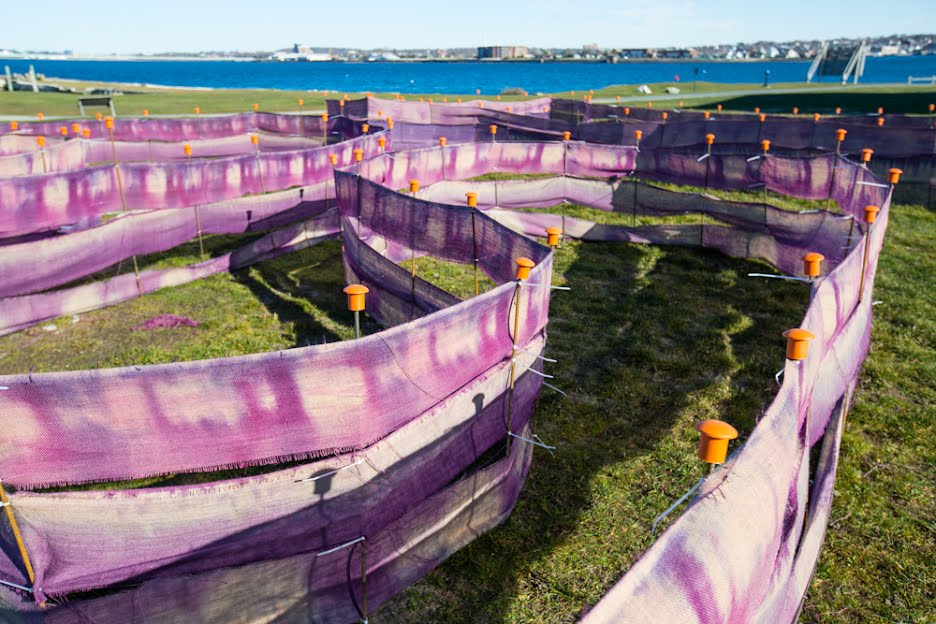 A site-specific installation at historic Fort Adams in Newport, RI created by Sculpture major Charlie Ehrenfried BFA 2018 and Textiles major Malaika Temba BFA 2018