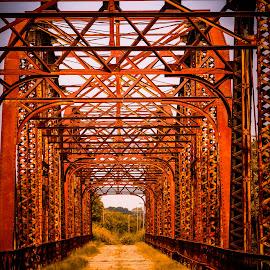 Old Bridge by Jennifer  Loper  - Buildings & Architecture Bridges & Suspended Structures ( steel, old bridge, foot traffic, lake, suspension )